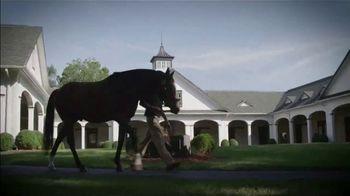 Kentucky Thoroughbred Association TV Spot, 'A Living, Breathing Industry' - Thumbnail 6