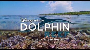 Disney+ TV Spot, 'Dolphin Reef and Elephant' - Thumbnail 3