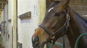 Claiborne Farm TV Spot, 'Runhappy: Working' - Thumbnail 3