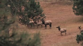 Hornady Precision Hunter TV Spot, 'Never Compromise' - Thumbnail 9