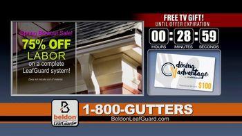 Beldon LeafGuard Spring Blowout Sale TV Spot, 'Mother Nature' - Thumbnail 5