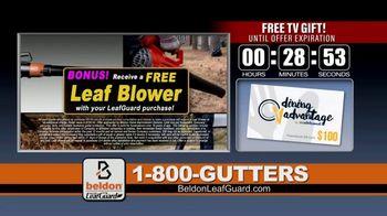Beldon LeafGuard Spring Blowout Sale TV Spot, 'Mother Nature' - Thumbnail 6