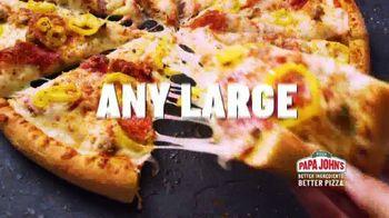 Papa John's TV Spot, 'Craving: $12 Large Pizza' - Thumbnail 3