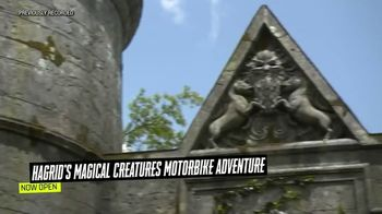 The Wizarding World of Harry Potter TV Spot, 'Hagrid's Magical Creatures Motorbike Adventure: Meeting the Magical Creatures' - Thumbnail 3