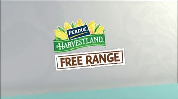 Perdue Farms TV Spot, 'Ion Television: Take Care of Your Family' - Thumbnail 8