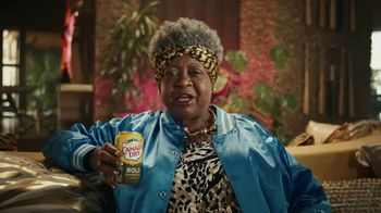 Canada Dry Bold TV Spot, 'Not Your Grandma's Ginger Ale: Napping' - Thumbnail 4