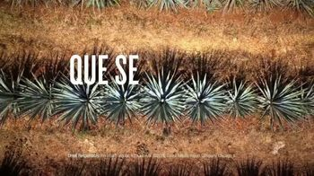 Hornitos Tequila TV Spot, 'Brindemos por una familia' [Spanish] - Thumbnail 3