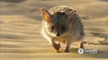 CuriosityStream TV Spot, 'Stay Curious'
