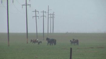 Nationwide Agribusiness TV Spot, 'Severe Weather Tips' - Thumbnail 2
