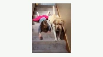PetSmart TV Spot, 'Dear Pets' - Thumbnail 5