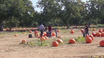 Nationwide Agribusiness TV Spot, 'Agri-Tourism' - Thumbnail 3