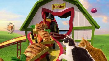Friskies Farm Favorites TV Spot, 'Real Farm-Raised Chicken' - Thumbnail 5
