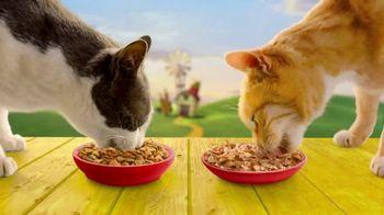 Friskies Farm Favorites TV Spot, 'Real Farm-Raised Chicken' - Thumbnail 7
