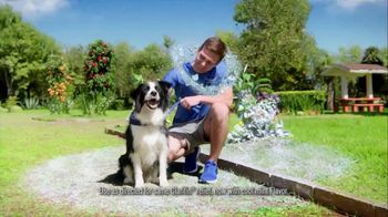 Claritin Cool Mint Chewables TV Spot, 'Feel the Clarity: Dog Walk: Save $13' - Thumbnail 6