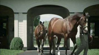 Spendthrift Farm TV Spot, 'General Sire' - Thumbnail 3