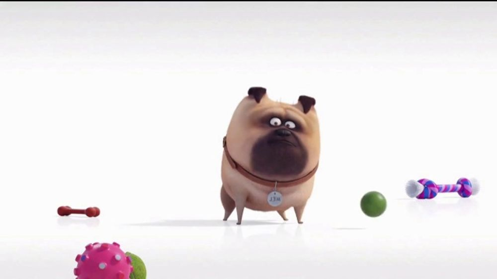 Universal Studios Hollywood TV Commercial, 'The Secret Life of Pets: Off the Leash - Mirror'