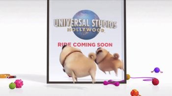 Universal Studios Hollywood TV Spot, 'The Secret Life of Pets: Off the Leash - Mirror' - Thumbnail 10