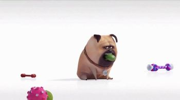 Universal Studios Hollywood TV Spot, 'The Secret Life of Pets: Off the Leash - Mirror' - Thumbnail 2