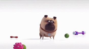 Universal Studios Hollywood TV Spot, 'The Secret Life of Pets: Off the Leash - Mirror'