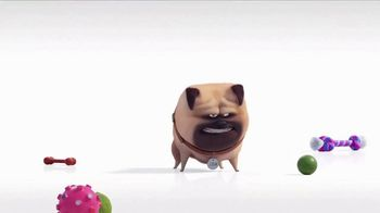 Universal Studios Hollywood TV Spot, 'The Secret Life of Pets: Off the Leash - Mirror' - Thumbnail 4