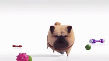 Universal Studios Hollywood TV Spot, 'The Secret Life of Pets: Off the Leash - Mirror' - Thumbnail 5