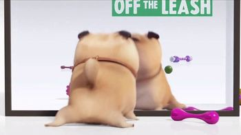 Universal Studios Hollywood TV Spot, 'The Secret Life of Pets: Off the Leash - Mirror' - Thumbnail 6