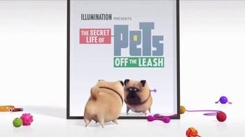 Universal Studios Hollywood TV Spot, 'The Secret Life of Pets: Off the Leash - Mirror' - Thumbnail 8