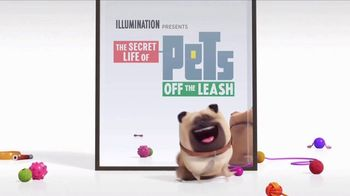 Universal Studios Hollywood TV Spot, 'The Secret Life of Pets: Off the Leash - Mirror' - Thumbnail 9