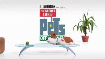 The Secret Life of Pets: Off the Leash TV Spot, 'Ride Coming Soon' - 1 commercial airings