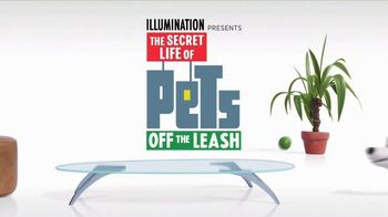 The Secret Life of Pets: Off the Leash TV Spot, 'Ride Coming Soon' - Thumbnail 1