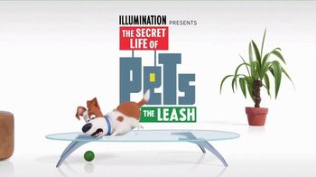 The Secret Life of Pets: Off the Leash TV Spot, 'Ride Coming Soon' - Thumbnail 4