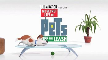 The Secret Life of Pets: Off the Leash TV Spot, 'Ride Coming Soon' - Thumbnail 5
