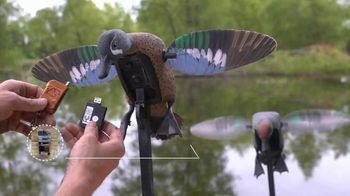 Mojo Outdoors Elite Series Blue and Green Wing Teal TV Spot, 'Remote Ready' - Thumbnail 3