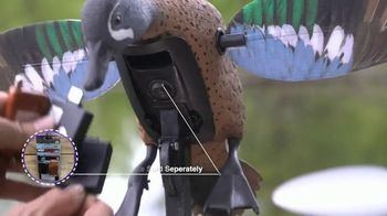 Mojo Outdoors Elite Series Blue and Green Wing Teal TV Spot, 'Remote Ready' - Thumbnail 4
