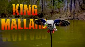 Mojo Outdoors Elite Series Blue and Green Wing Teal TV Spot, 'Remote Ready' - Thumbnail 8