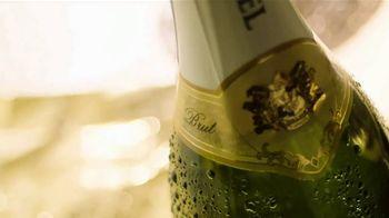 Korbel Brut TV Spot, 'Make It Gold' Song by Sister Sparrow - Thumbnail 4