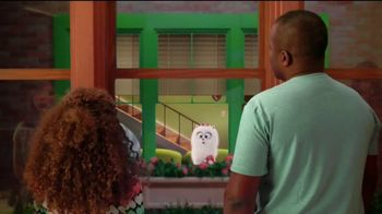 Universal Studios Hollywood TV Spot, 'Coming to Life: The Secret Life of Pets: Off the Leash'