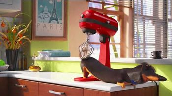 The Secret Life of Pets: Off the Leash TV Spot, 'Coming to Life' - Thumbnail 3