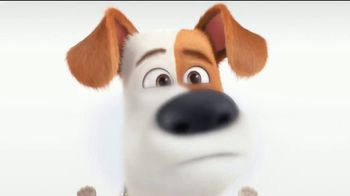 Universal Studios Hollywood TV Spot, 'Coming to Life: The Secret Life of Pets: Off the Leash' - Thumbnail 1