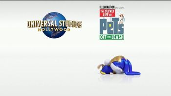 Universal Studios Hollywood TV Spot, 'Coming to Life: The Secret Life of Pets: Off the Leash' - Thumbnail 9