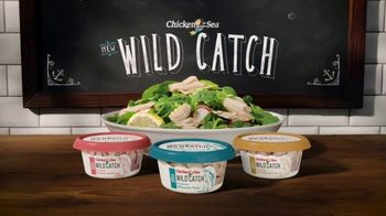 Chicken of the Sea Wild Catch TV Spot, 'Enjoy the Catch of the Day, Any Day' - 3123 commercial airings