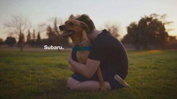 Subaru TV Spot, 'Subaru Loves Pets' [T1] - Thumbnail 9