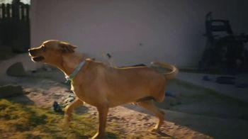 Subaru TV Spot, 'Subaru Loves Pets' [T1] - Thumbnail 2