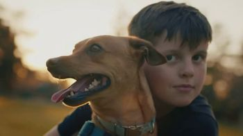 Subaru TV Spot, 'Subaru Loves Pets' [T1]