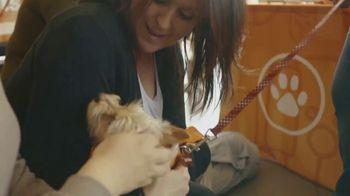 Subaru TV Spot, 'Subaru Loves Pets' [T1] - Thumbnail 4