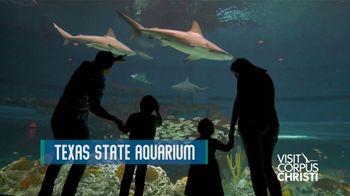 Corpus Christi Convention and Visitors Bureau TV Spot, 'Coastal Distancing' - Thumbnail 7