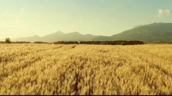 Michelob ULTRA Pure Gold TV Spot, 'Taste: Organic by Nature' - Thumbnail 1