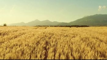 Michelob ULTRA Pure Gold TV Spot, 'Taste: Organic by Nature' - Thumbnail 2
