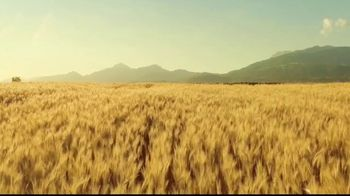 Michelob ULTRA Pure Gold TV Spot, 'Taste: Organic by Nature' - Thumbnail 3