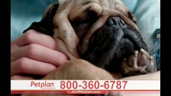 Petplan TV Spot, 'Unexpected Vet Care' - Thumbnail 7